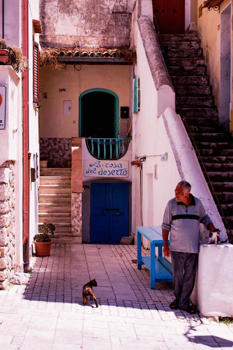San Felice: colonia felina